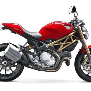 Ducati MONSTER 1100 (2010/2014)