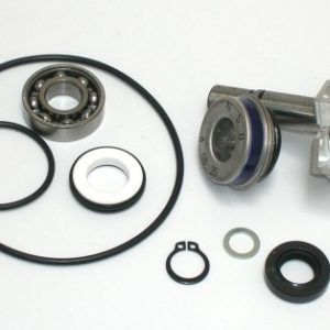 Kits Reparación Bomba Agua - Kit Reparación Bomba De Agua SGR T-Max 500 (01-03) -